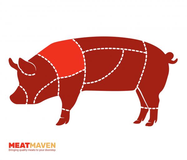 Pork Diagram - Shoulder